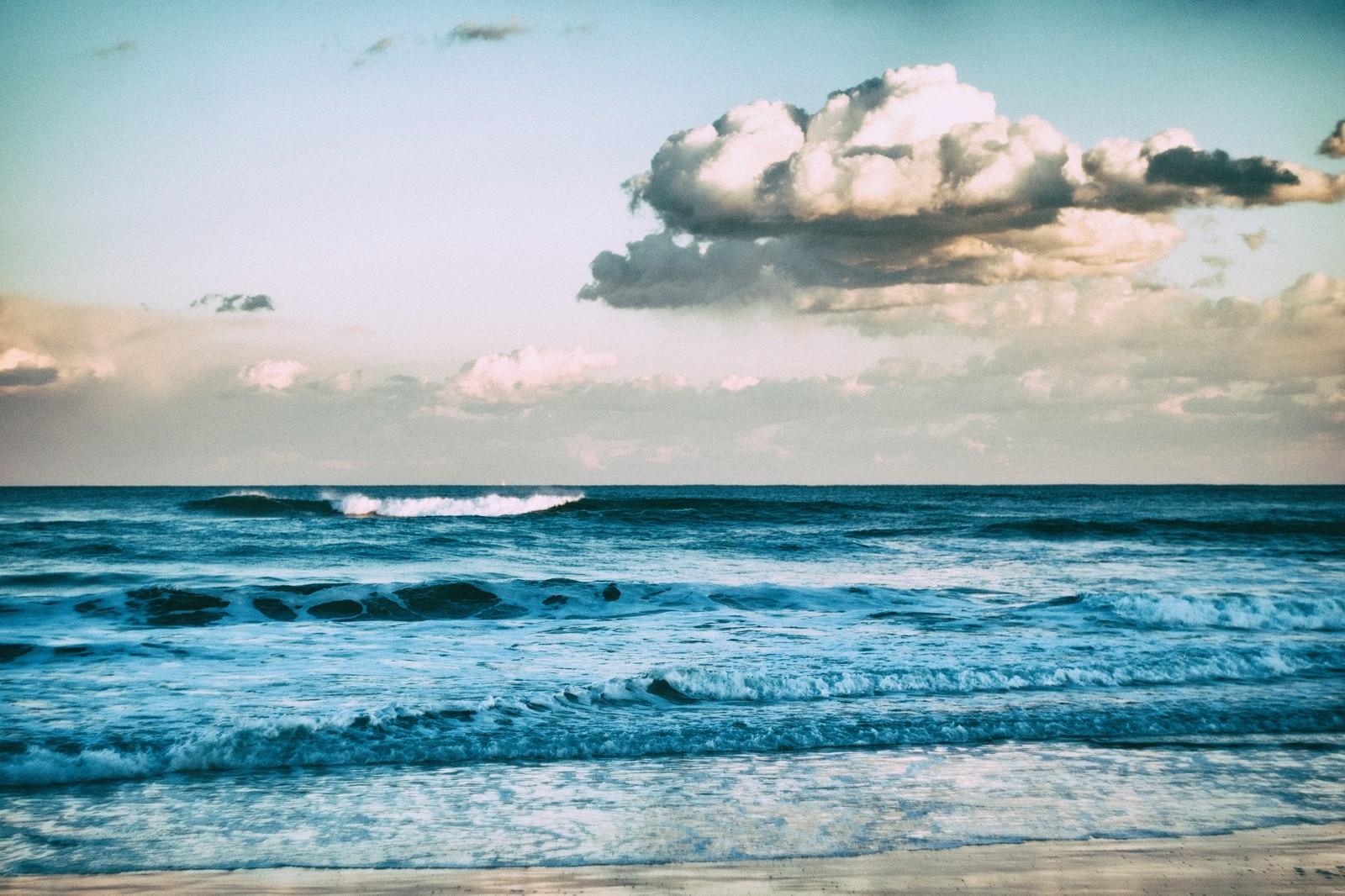 息を飲むほど美しい!クジラの親子のドローン空撮映像3選+αをご紹介!