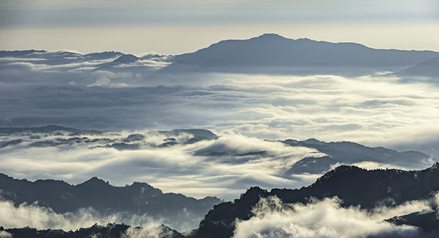 【日本初】秩父・三峯神社で絶景の雲海を撮影しよう!ドローン撮影ツアー参加者募集