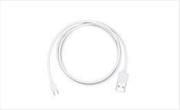 マイクロ USBケーブル* ×1