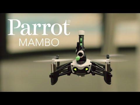 メーカ公式mambo紹介(parrot)